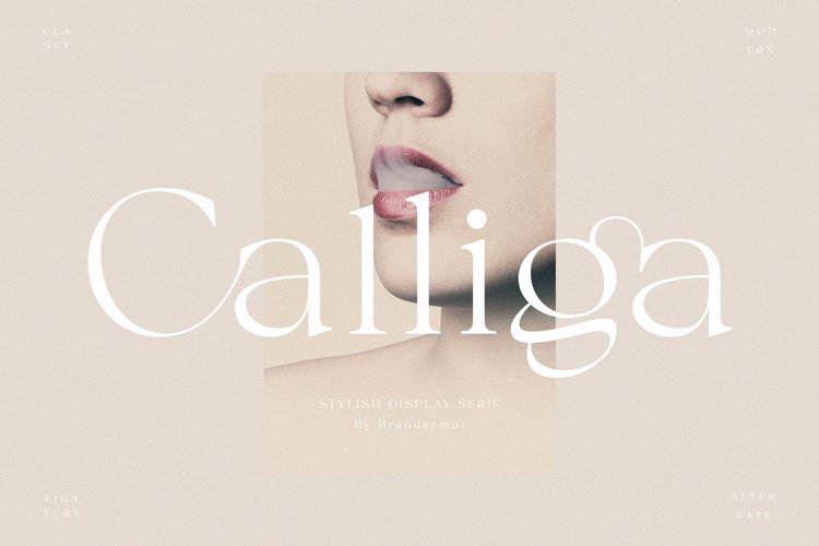 Calliga // Stylish Ligature Serif example image 1