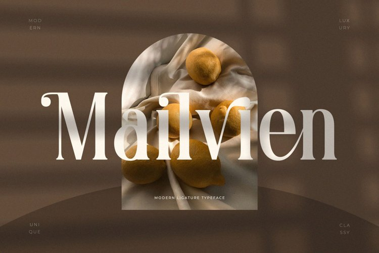 Mailvien - Modern Ligature Typeface example image 1