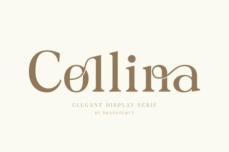 Collina // Ligature Serif Font example image 1