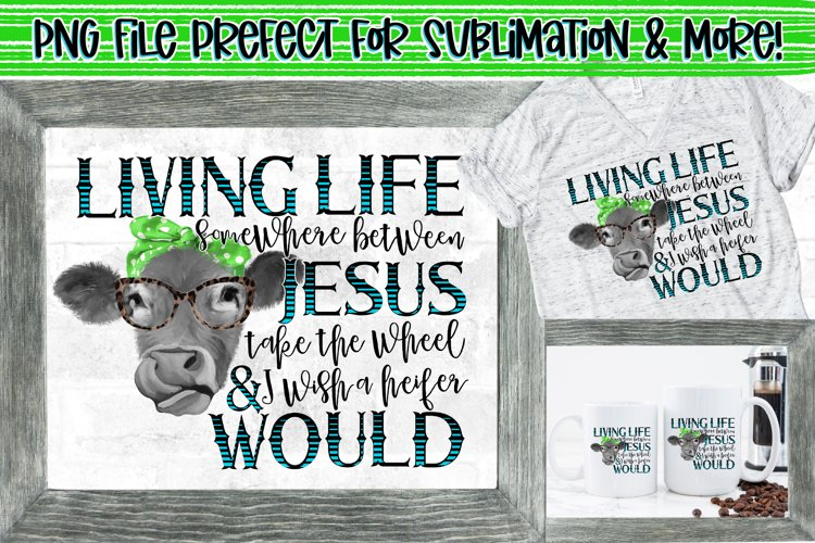 Living life somewhere between Jesus take the wheel   heifer