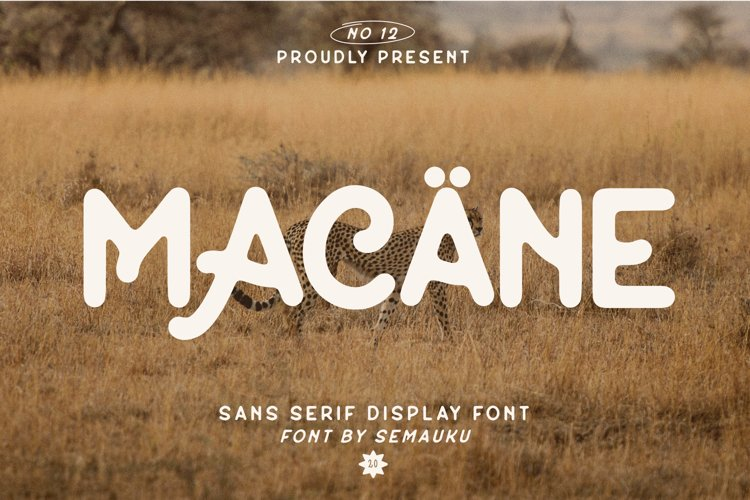 Macane - Sans Serif Display Font example image 1