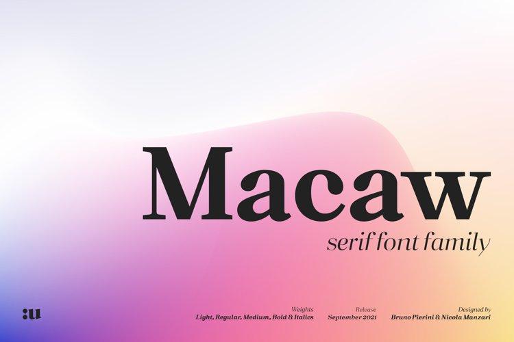Macaw - Serif Typeface example image 1