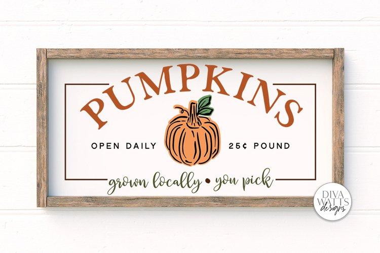 Pumpkins SVG | Farmhouse Autumn Pumpkin Patch Sign example image 1