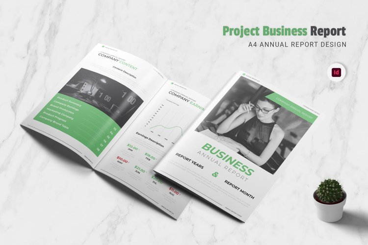 Project Business Annual Report example image 1