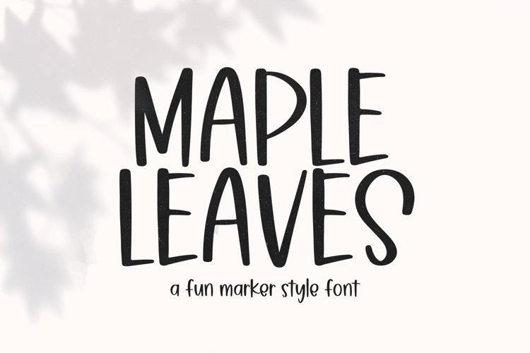 Maple Leaves - Fun Handwritten Font example image 1