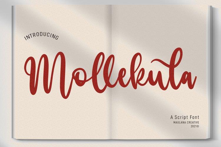 Mollekula Script Font example image 1