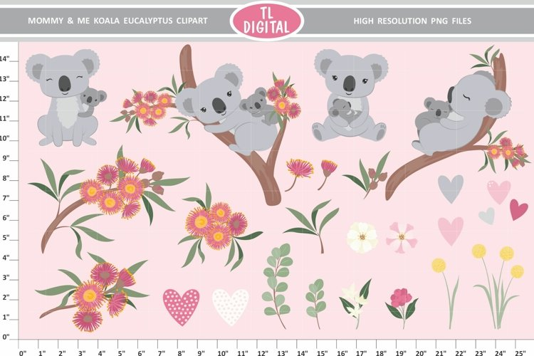 Koala Clipart - Mommy and Baby - 24 PNG Graphics