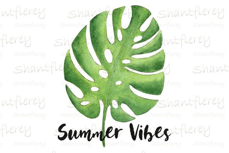 Monstera Leaf PNG, Summer Vibes Sublimation, Tropical Leaf