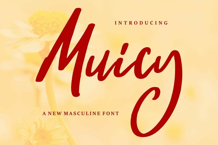 Web Font Muicy - A New Masculine Font example image 1