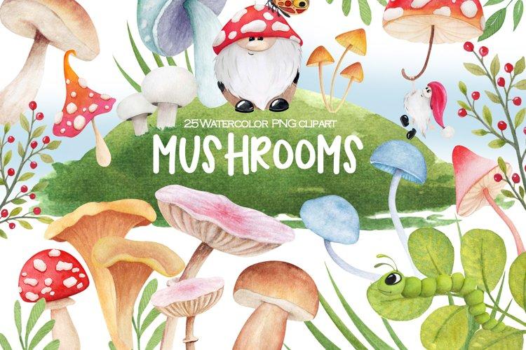 Watercolor magic mushroom art PNG clipart, Floral clip art