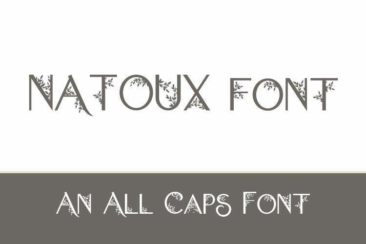 Natoux example image 1