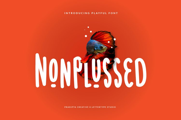 Nonplussed - Playful Font example image 1