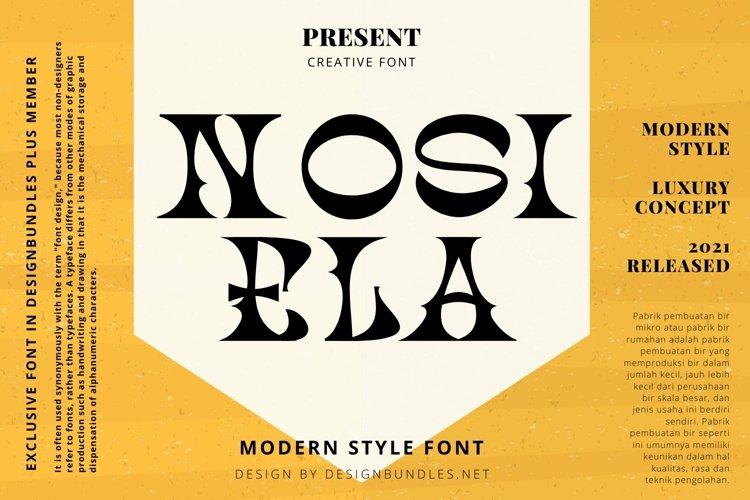 Web Font NOSIELA Font example image 1