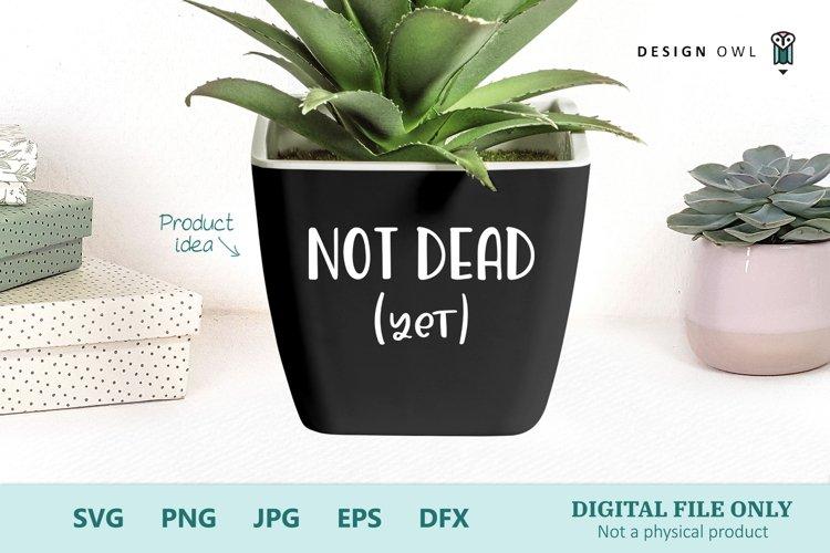Plant Pot SVG file - Not Dead