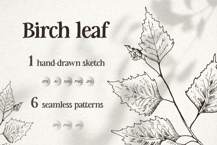 Birch leaf. Sketch and patterns