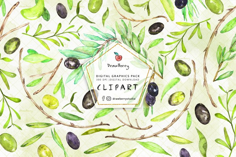 Watercolor Olive Leaves Clipart| Drawberry CP053 example image 1