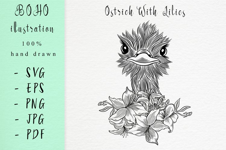 Boho illustration / Ostrich with lilies