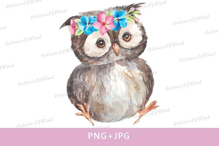 Watercolor Cute Owlet Sublimation PNG, Forest Animals Clipar