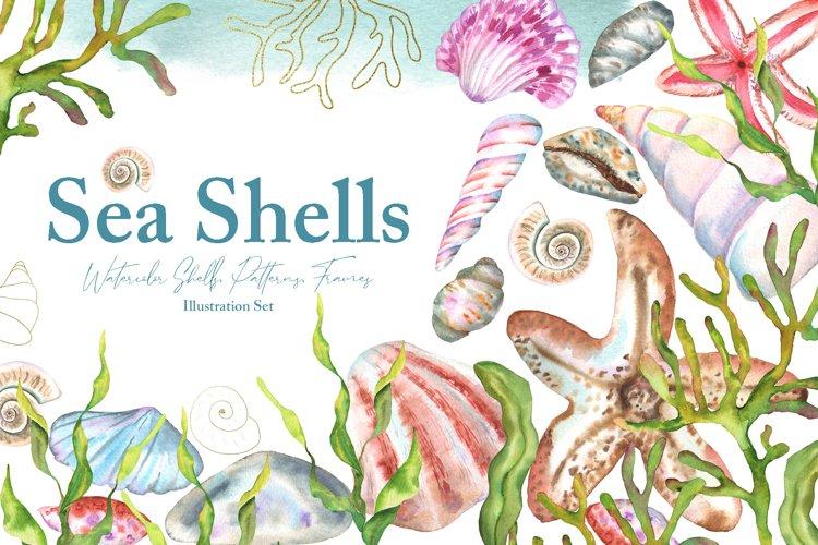 Watercolor Sea Shells Illustration Set