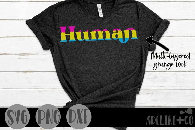 Human | Pansexual, Pride, SVG, PNG, DXF example image 1