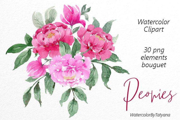 Watercolor pink peonies clipart.Watercolor flowers. Wedding