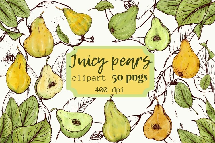 Juicy pears clipart, bright yellow and green pears png files