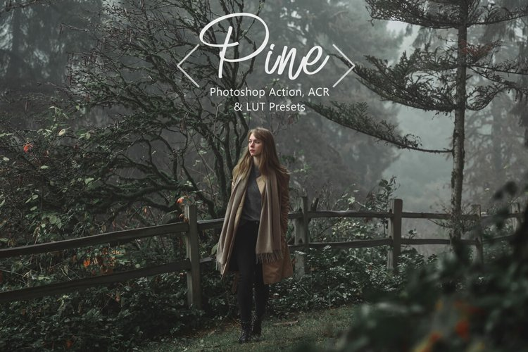 10 Photoshop Actions ACR Presets LUT Presets Neo Pine