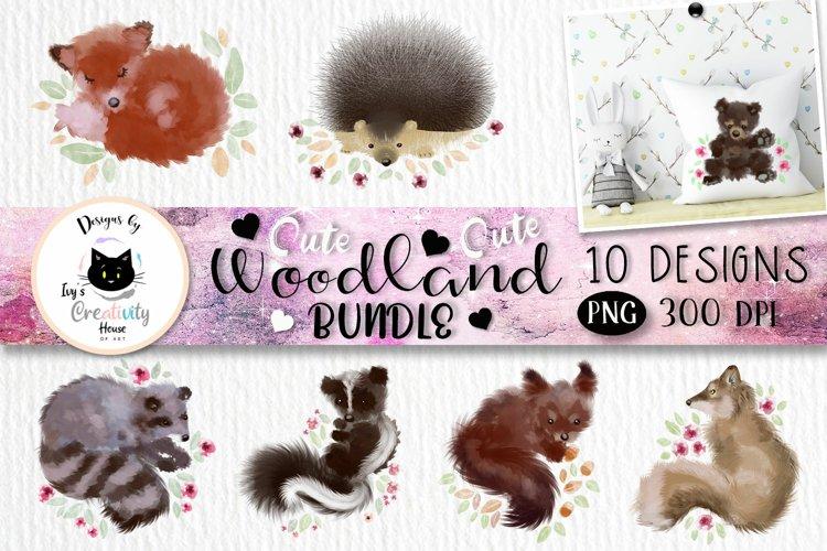 Cute Woodland Animal Clipart   Animal Sublimation Designs