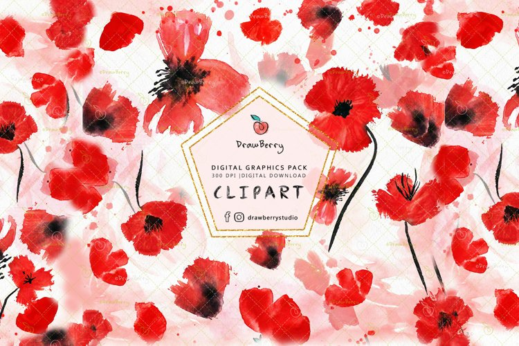 Watercolor Red Poppies Floral Clipart| Drawberry CP056 example image 1