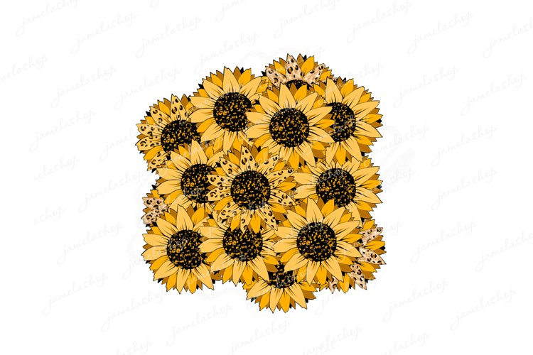 Sunflower leopard patches png Cheetah flowers background example image 1