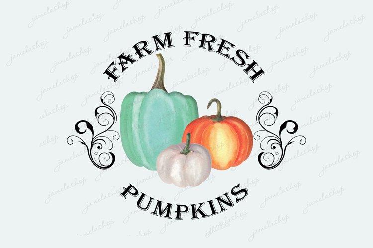 Farm fresh pumpkins clipart Watercolor Sublimation png example image 1