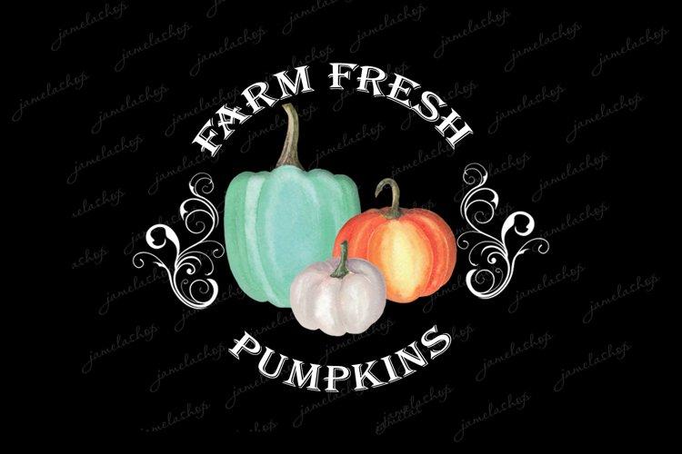 Farm fresh pumpkins png Watercolor Sublimation clipart example image 1