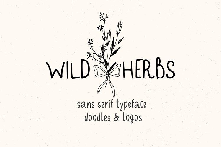 Wild Herbs. Rustic Sans Serif Font. Doodles, Logos example image 1