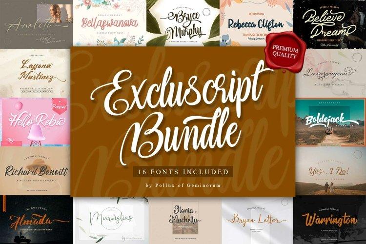 Excluscript - Selective Script Fonts Bundle for Designers example image 1