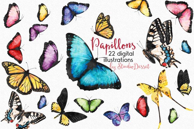 Butterflies Watercolor Illustrations