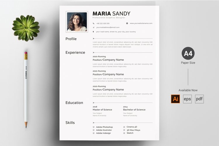 CV & Resume Template example image 1