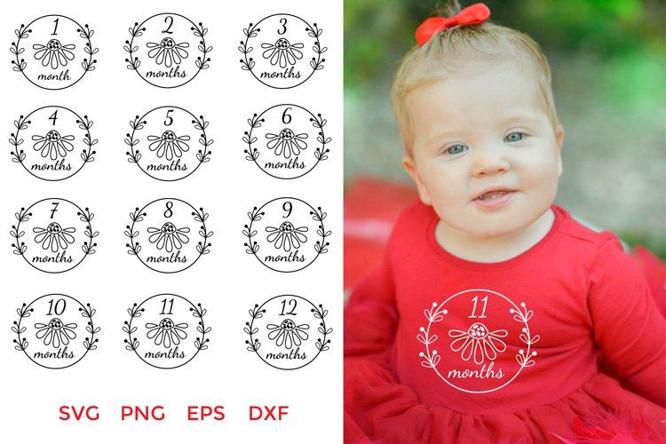 Baby Monthly Milestone Wreath SVG. Baby Milestone SVG Bundle