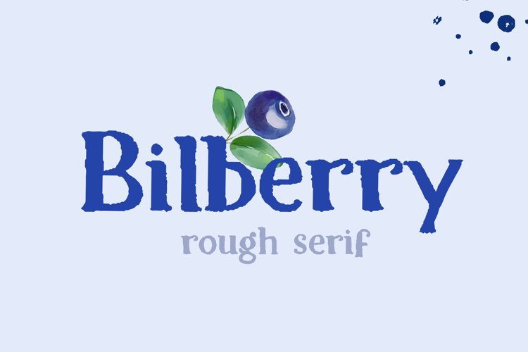 Bilberry rough serif font example image 1