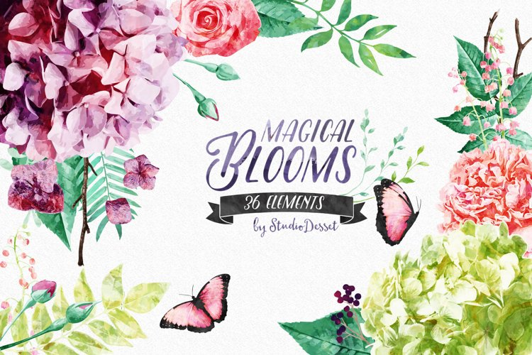 Floral Illustrations   Flowers and Butterflies Cliparts