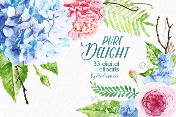 Floral Watercolor Illustrations | Flowers Digital Cliparts