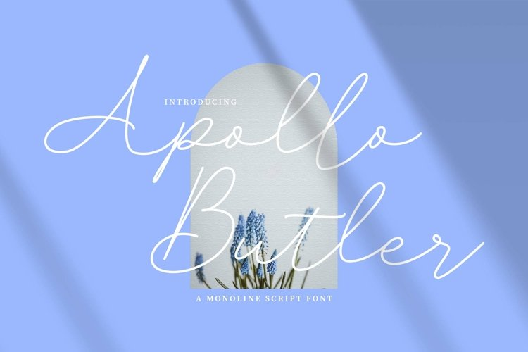 Apollo Butler Signature example image 1