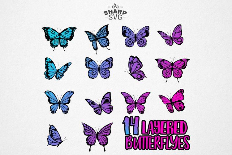 Butterfly SVG - Butterfly SVG Layered - 14 Butterfly Bundle