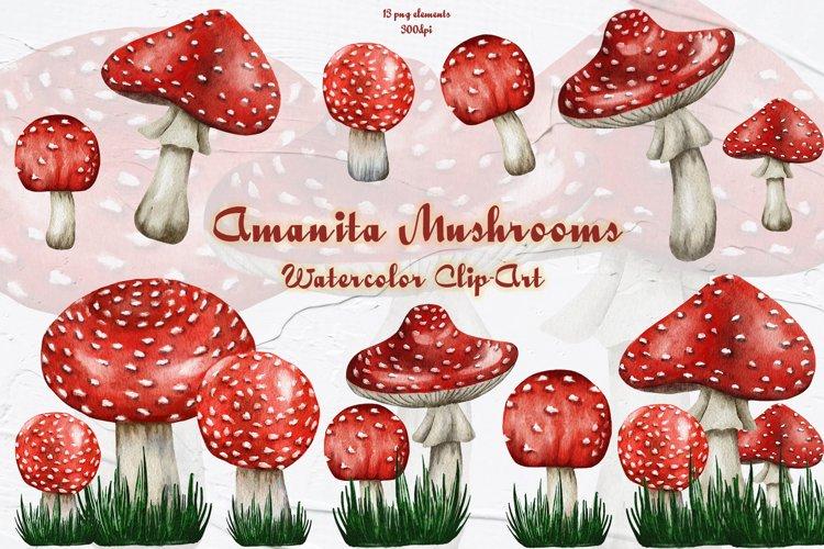 Amanita Mushrooms Watercolor Clipart example image 1