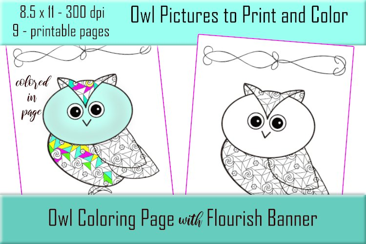 Cute Owl Coloring Pages - Printable - 8.5x11 - PNG example image 1