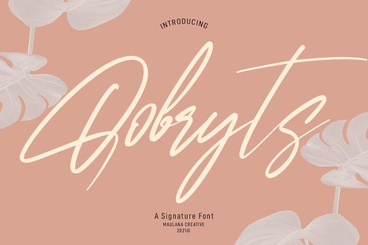 Qobryts Signatue Font example image 1