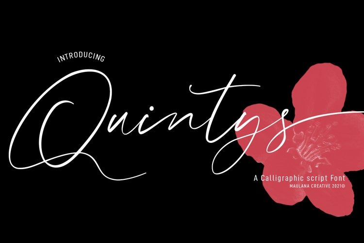 Quintys Calligraphy Script Font example image 1