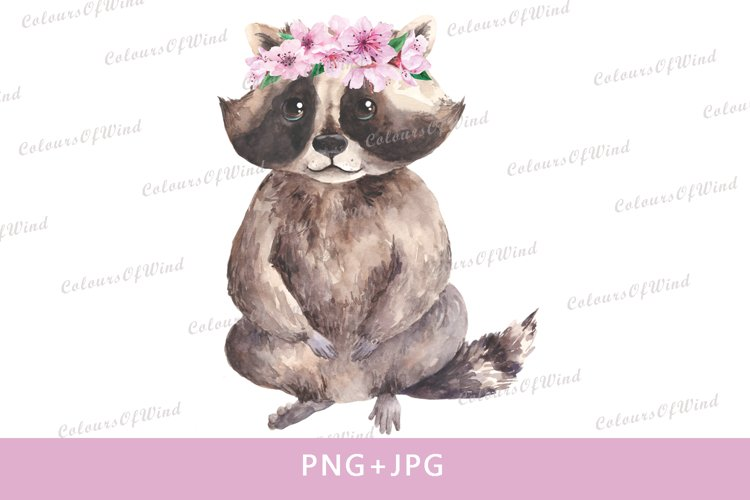 Watercolor Raccoon Sublimation PNG, Forest Baby Animals