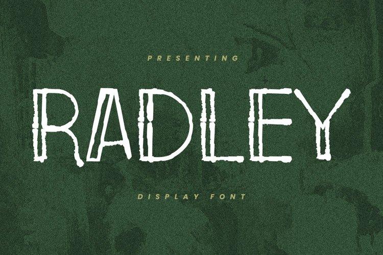 Web Font Radley - Display Font example image 1