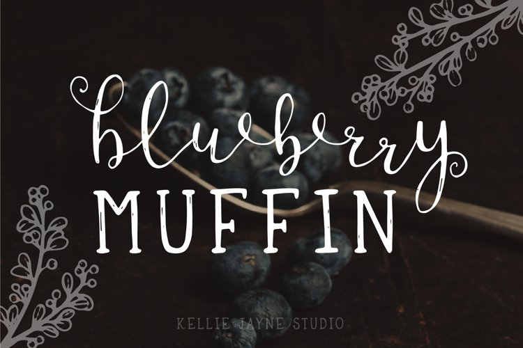 Blueberry Muffin Font Duo example image 1