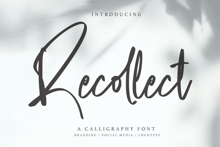 Recollect - Calligraphy Font example image 1